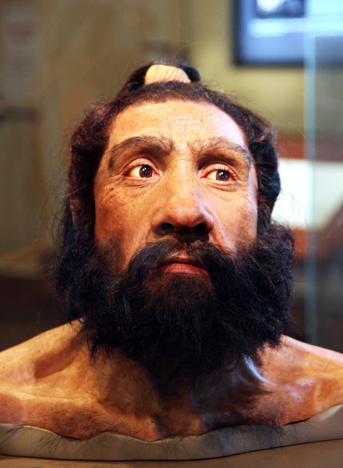 how much dna do we share with neanderthals